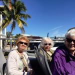 Enjoying the Miami scenery during the Hop On Hop Off guided tour
